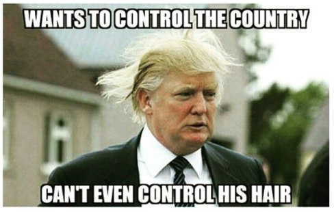 funny-donald-trump-meme-wants-to-control-the-country-cant-even-control-his-hair-image